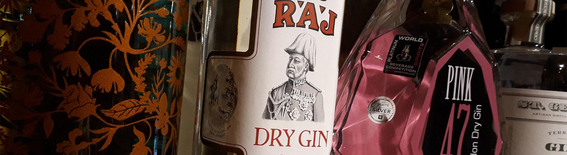 Vodkas Gins