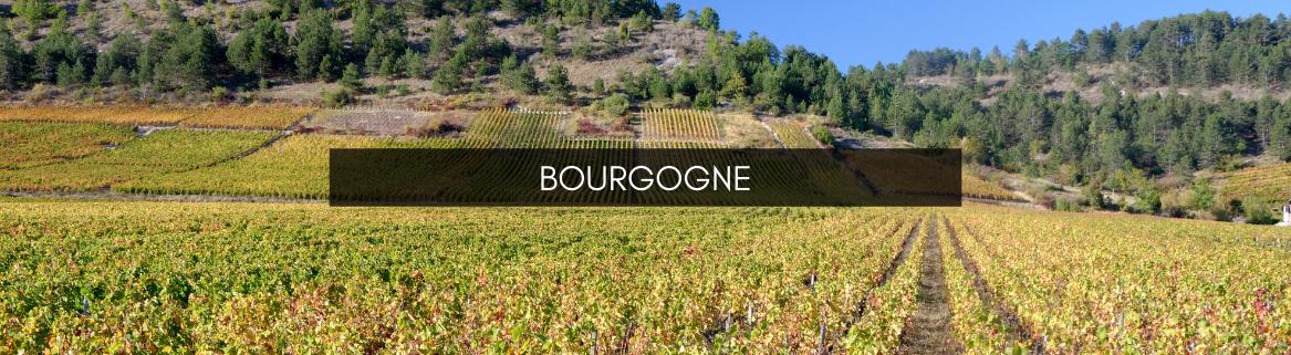 Vins de Bourgogne Avranches et Fougères