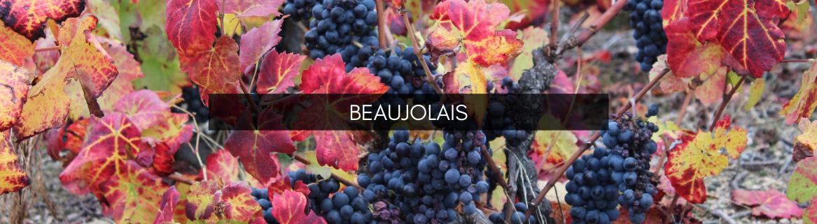 Beaujolais à Avranches et Fougères