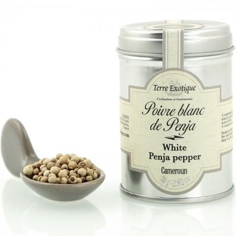 Poivre blanc de Penja L'alambic Avranches Fougères